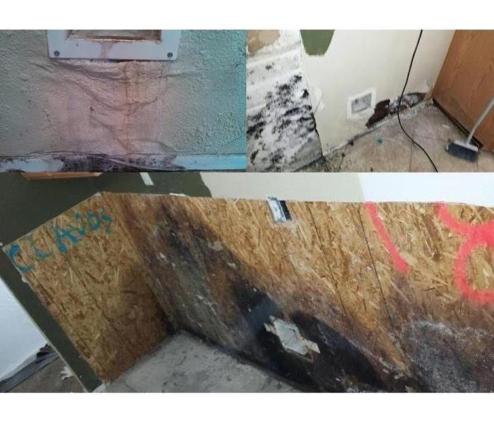 Mold Remediation Mold Remediation SERVPRO of South Rancho Cucamonga (Inland Empire)