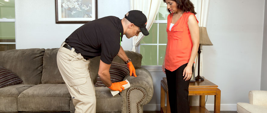 Rancho Cucamonga, CA carpet upholstery cleaning